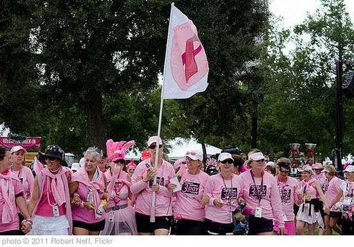 'Teams Lined up - Ready to Walk to the Closing Ceremonies,  #the3day 60 mile Walk for Breast Cancer' photo (c) 2011, Robert Neff - license: http://creativecommons.org/licenses/by/2.0/