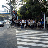crowd about to cross the street in Harajuku in Harajuku, Tokyo, Japan