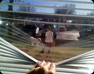 11-26-2011 taking his dog out (1)