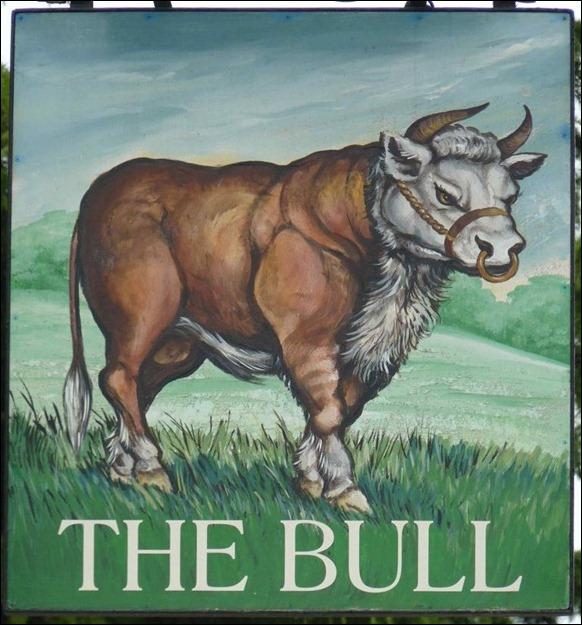 The Bull 01