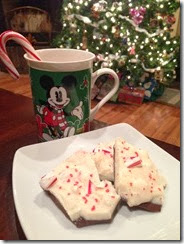 Peppermint Bark 10