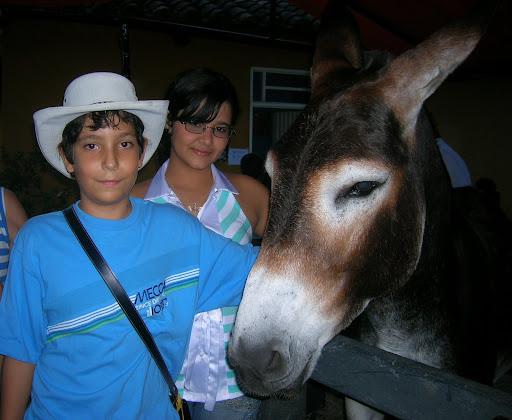 doris - Orquideorama