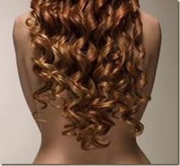Remedios Caseros para el cabello Decolorado2