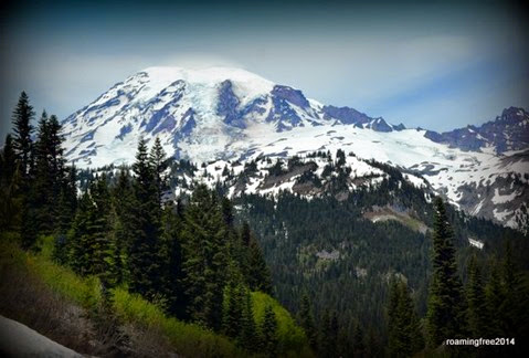 Another view of the glaciers on Mt. Rainier