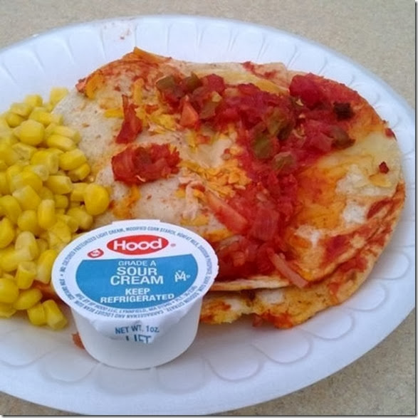 gross-school-lunches-9