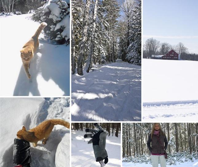 m_snow-1GR