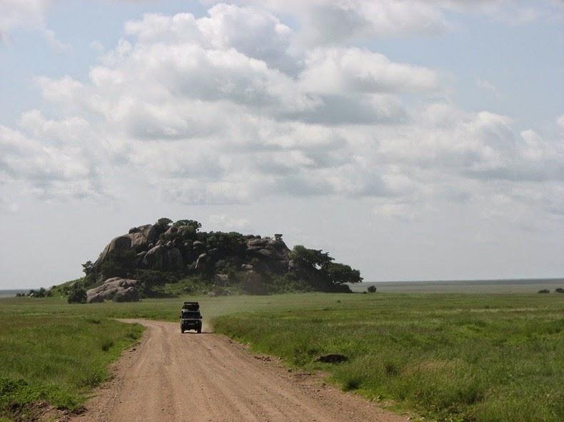kopje-serengeti-8
