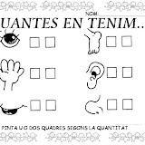 EL COS PROJECTE (13).JPG