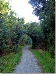 Beginning of Tideland Trail