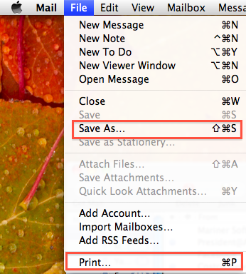 Save Options in Mail for Snow Leopard