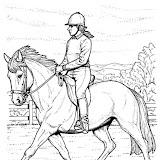 montar-a-caballo-t10274.jpg