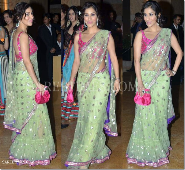 Sophie_Chaudhary_Shimmer_Saree