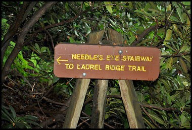 07 -Neddle's Eye Stairway to Laurel Ridge
