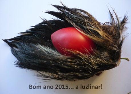 2015 luzlinar