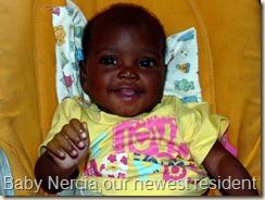Nercia Day 1