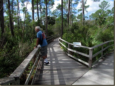 Al on boardwalk at Corkscrew Swamp