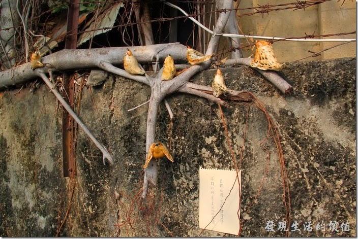 台南-321巷藝術聚落26