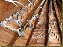 soffitto capanna