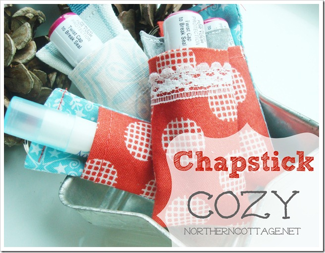 Adorable Chapstick Cozy @ Northern Cottage.net