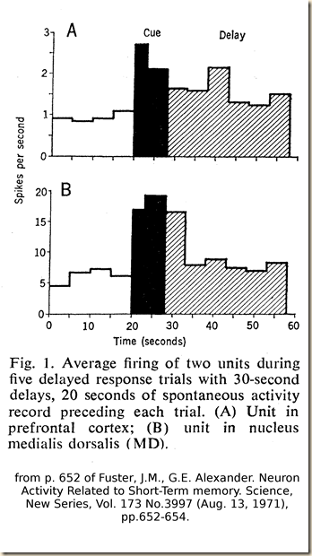 Fuster.1971.fig1.2