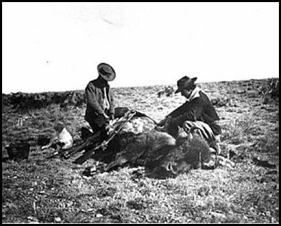 Le massacre des bisons en Amérique-7