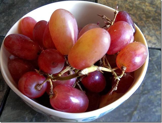 grapes-public-domain-pictures-1 (2274)