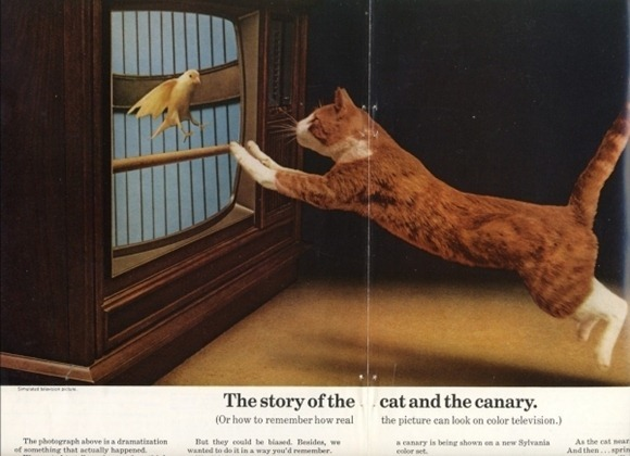 Vintage-Cat-Advertisements-16