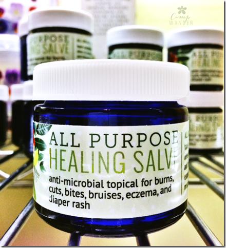 Healing-Salve-2014