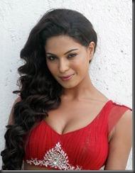 veena-malik-very hot