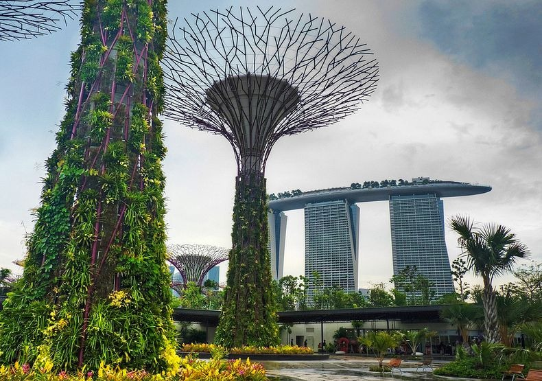 supertrees-singapore-3