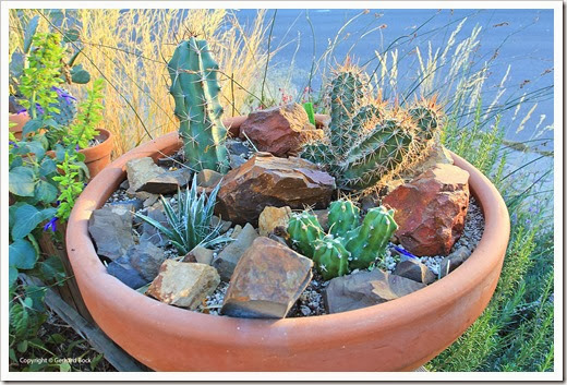 131026_pots-on-front-yard-fence_12