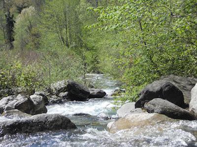 un lieux idyllique pour la pèche a coté du camping à Laruns