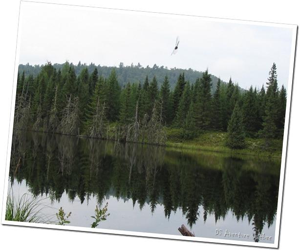 Lac Taureau - chemin vers le barrage - armee de l'air