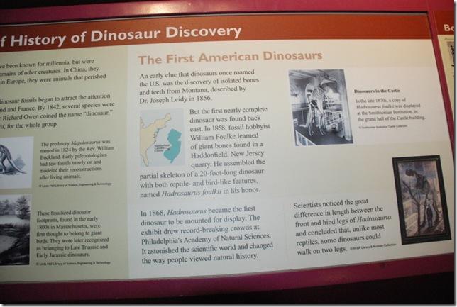 11-12-12 B Museum Of Natural History 014