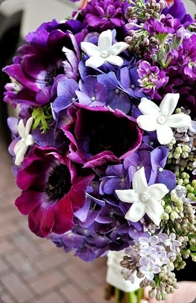 stephanotis DSC_0390  courtenay lambert florals