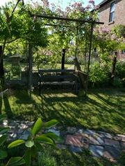 garden june 2011 022