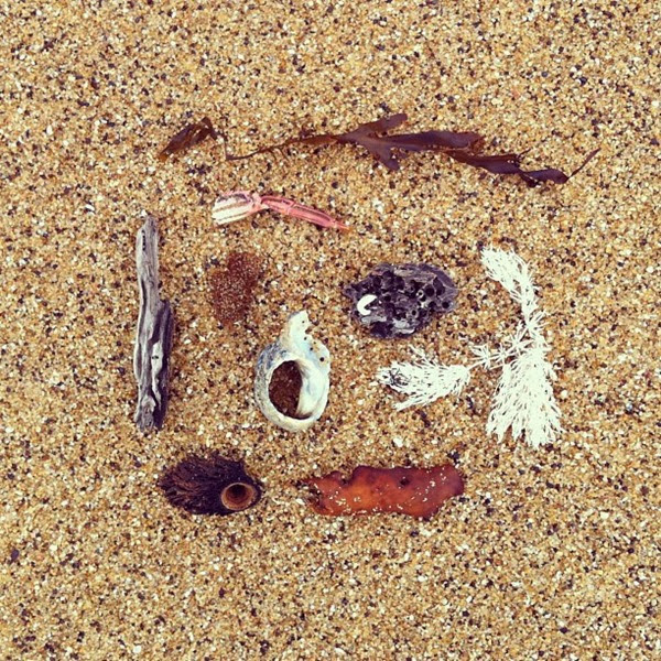 Tidal detritus on Bells Beach by Alchemy