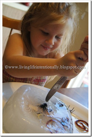 Preschoolers Exploring Science of Ice and Insects