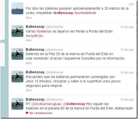 Ballenas Twitter Uruguay