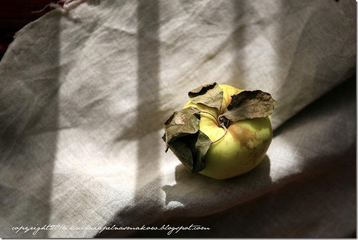 Tarta jabłkowa z dynią (1)