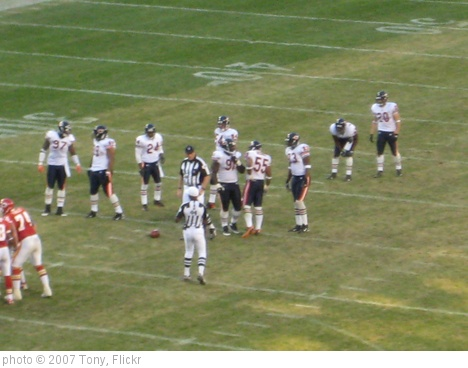'Bears Defense' photo (c) 2007, Tony - license: http://creativecommons.org/licenses/by-sa/2.0/