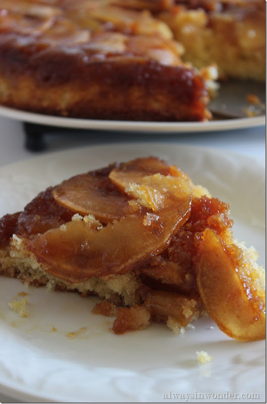 caramelized apple skillet cake (6)