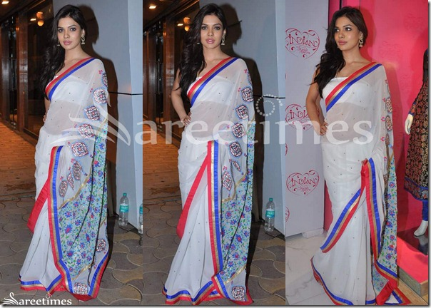 White_Embroidery_Georgette_Saree