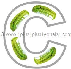 c caterpillar