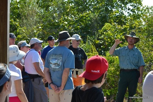 Brian explains the various native and naturalized plants at Lovers Key