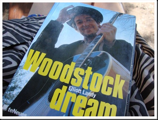 woodstock dream (1)