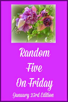 #randomfive January 24th Edition with review product preview at Circling Through This Life
