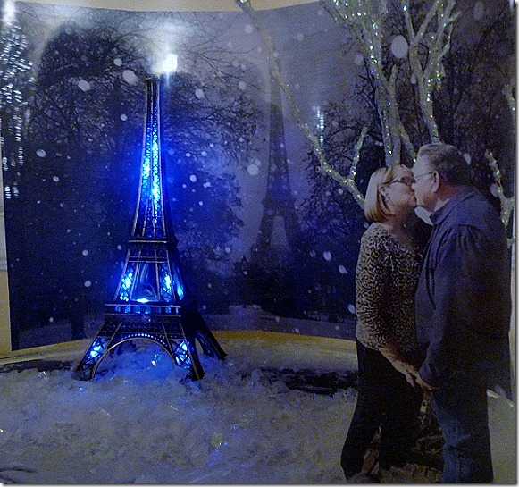 Paris Snow globe 016 (800x588)