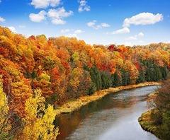 Elora in Fall