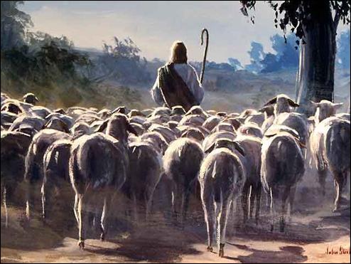 Пастир і вівці.